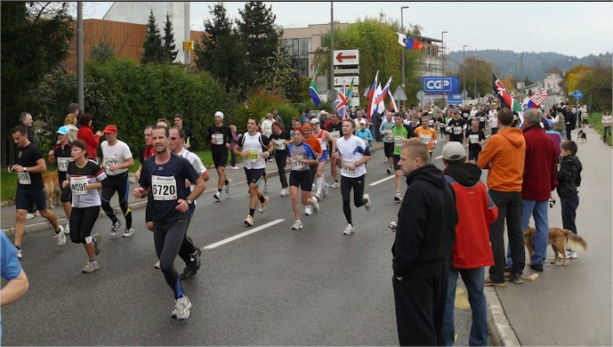 LM2010_tf-15